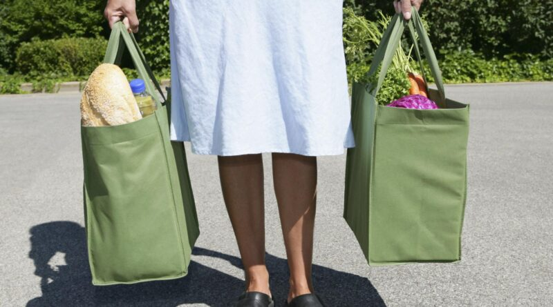 Futuristic and Fantastic Things About Reusable Carry Bags
